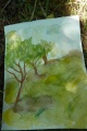 Dessiner les arbres 4
